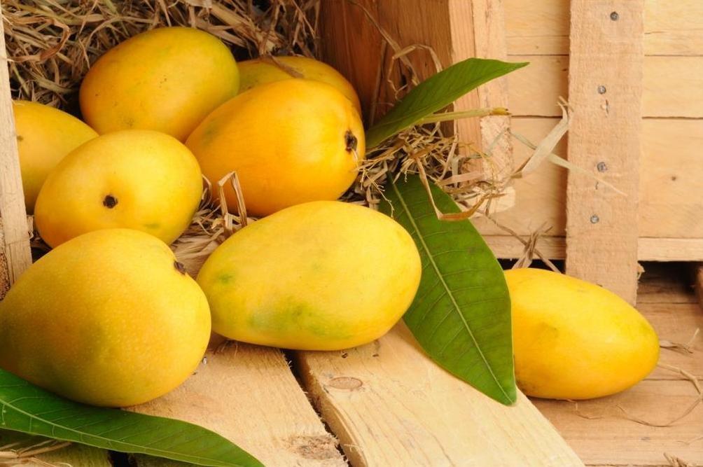 Как понять что манго спелое