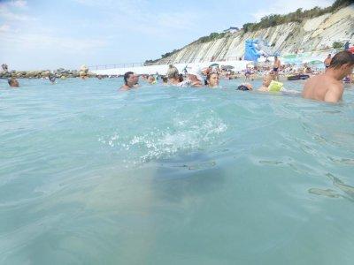 Отдых в Кабардинке: теплое море, интересные места, хорошие отели, жилье в частном секторе, интересные экскурсии и советы путешественников