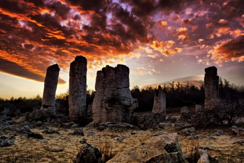 куда сходить Болгария Солнечный Берег