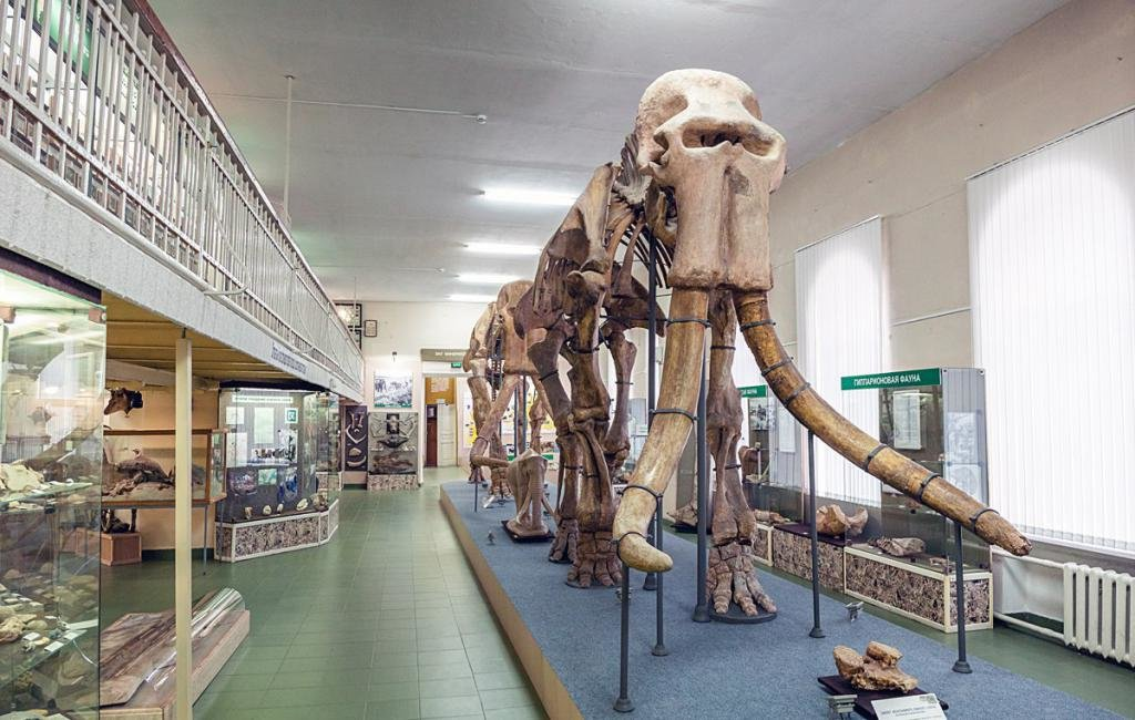Экспозиция краеведческого музея