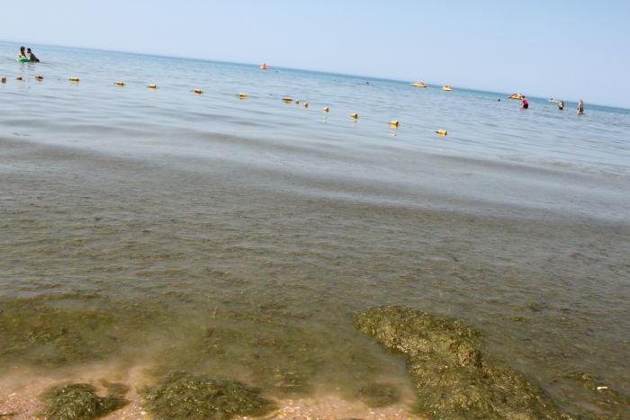 море анапа фото