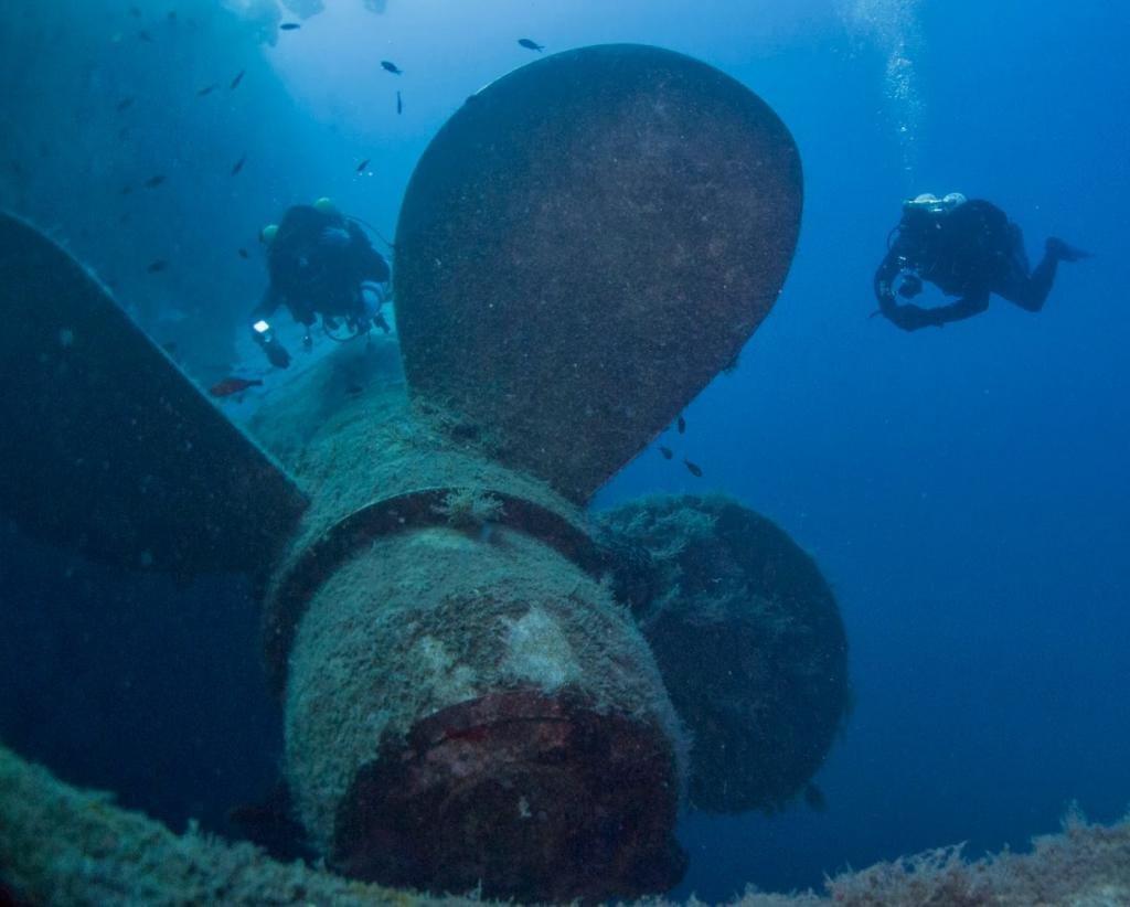 Дайвинг к месту кораблекрушения MS Zebonia