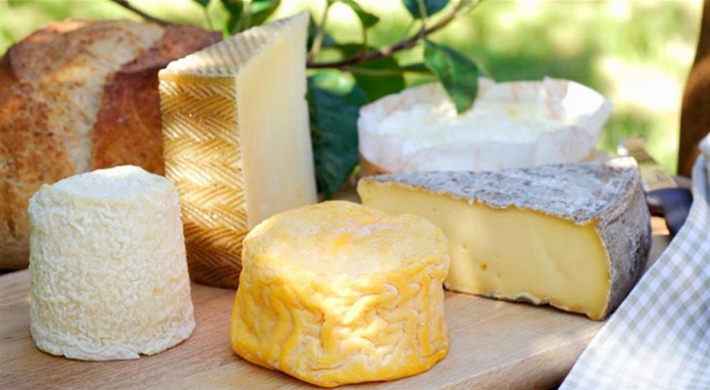 Какой сыр привезти из Италии