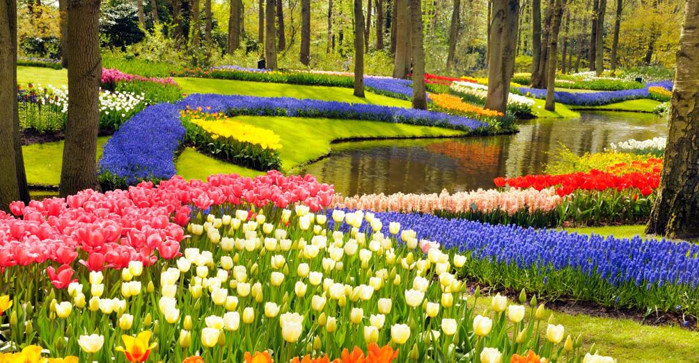 цветочный парк