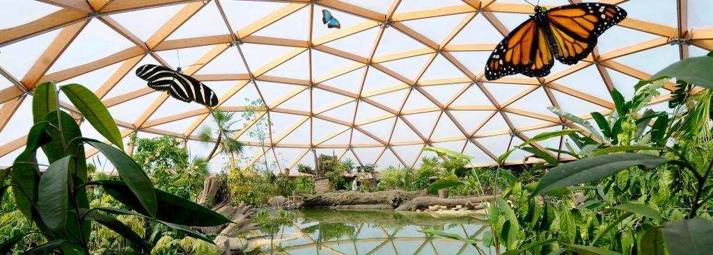 Зоопарк «Блейдорп»