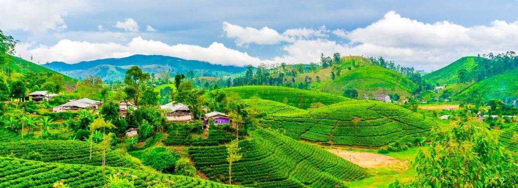 Природа Шри-Ланки