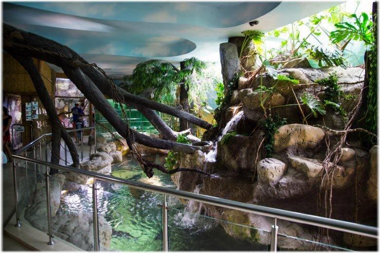 Тропическая амазонка