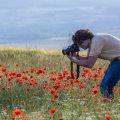 Где хорошо отдохнуть в Крыму: отзывы туристов