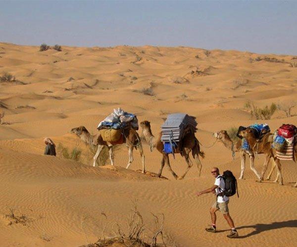 Экскурсия в Сахару