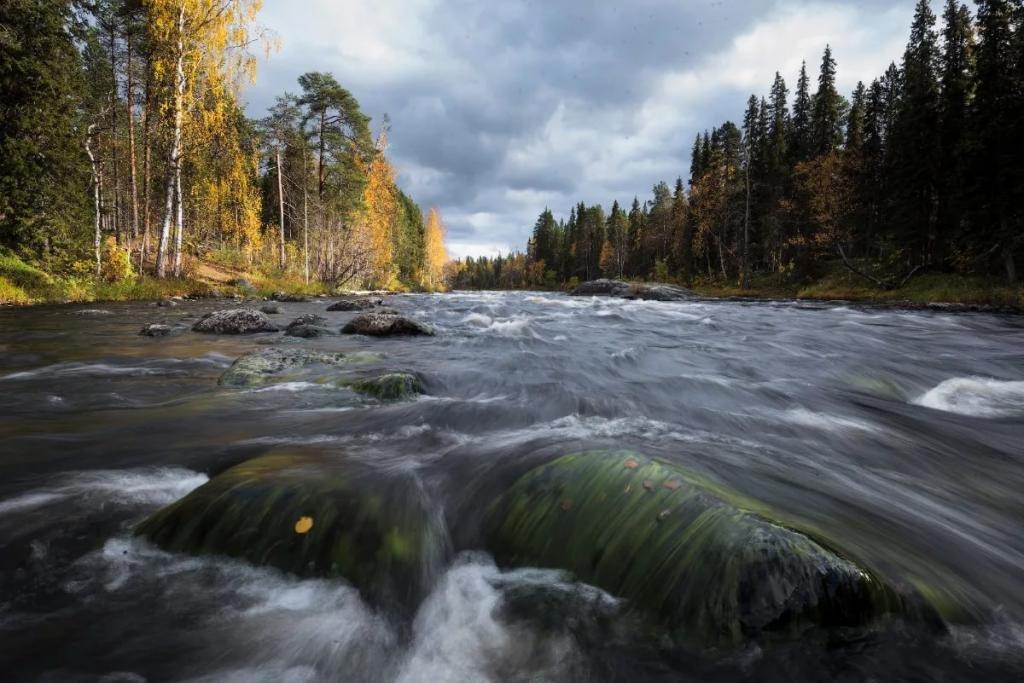 карельские реки