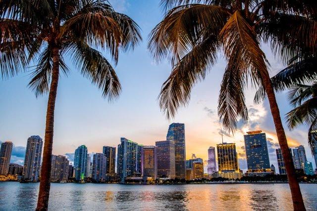 пальмы и небоскребы Майами