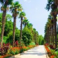 Куда съездить в Крыму: исторические места, достопримечательности, музеи, интересные экскурсии, замки, рестораны, рекомендации и советы туристов