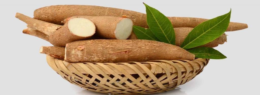 Кассава или маниока