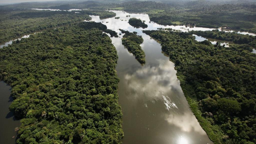 воды реки Амазонки