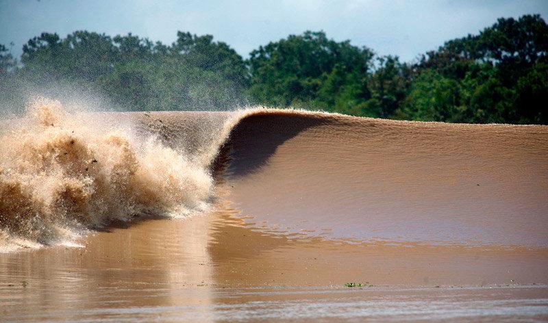 Приливная волна Амазонки