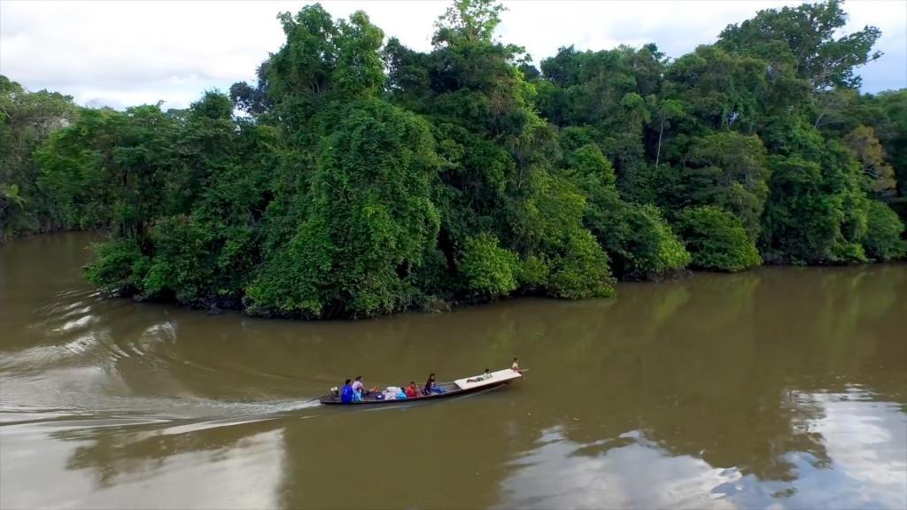 мутные воды Амазонки