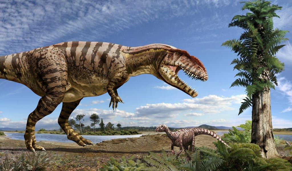 Кто произошел от динозавров