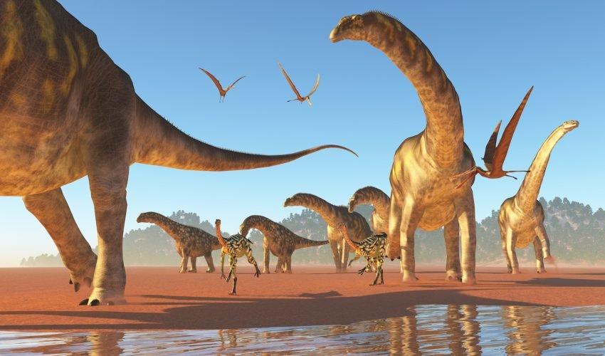 Как рождаются динозавры