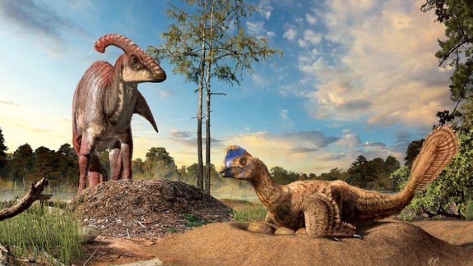 От кого произошли динозавры