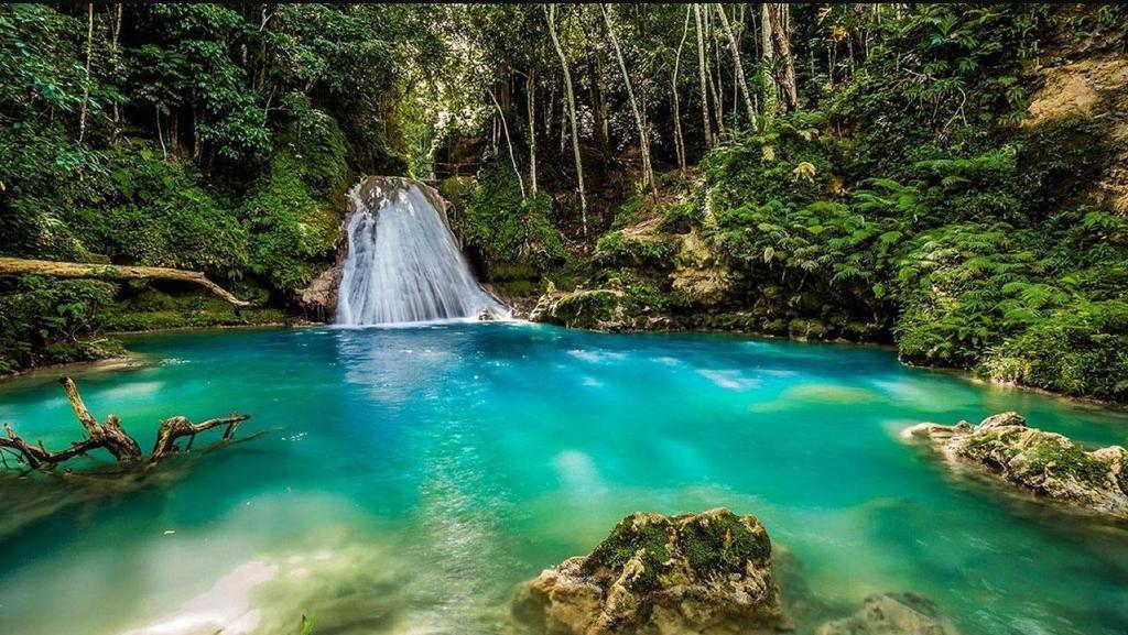 Природа Ямайки