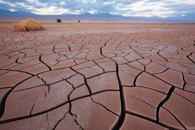 Самая сухая пустыня Атакама в Южной Америке: описание, интересные факты и фото