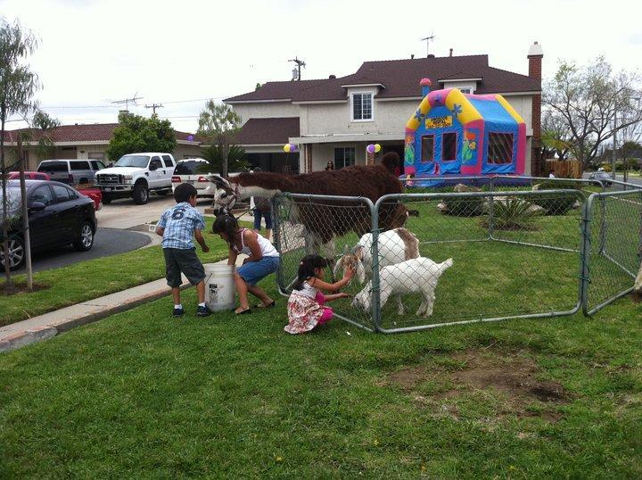 Куда можно сводить ребенка на день рождения