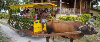 Ла Диг, Сейшелы: лучшие пляжи, отели, достопримечательности и фото туристов