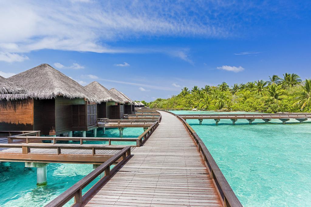 Мальдивы или Сейшелы - что выбрать?